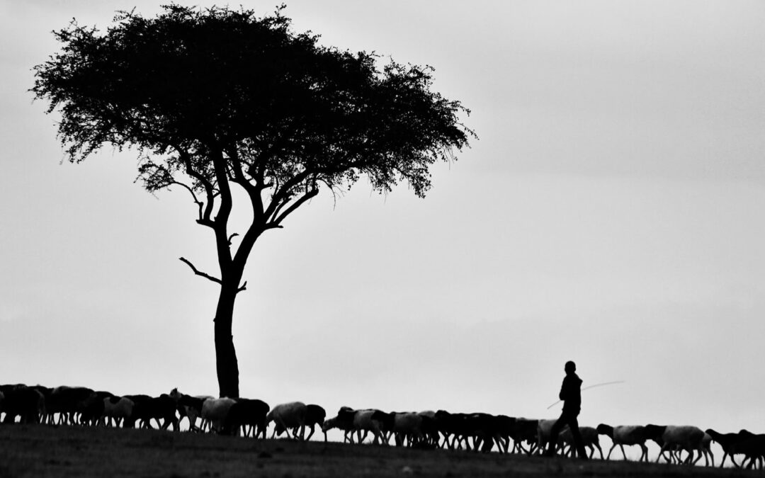 He Is My Shepherd